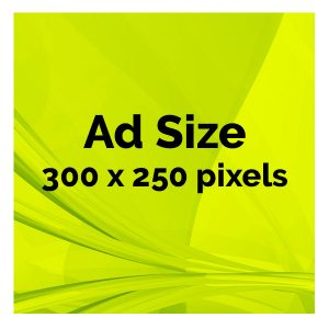 300 x 250 pixel ad for sale